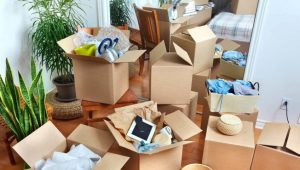 Household Relocation Service Pune