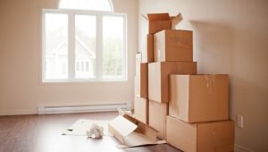 Packing and Moving Service In Pune