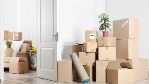 Packers and Movers Magarpatta City Pune