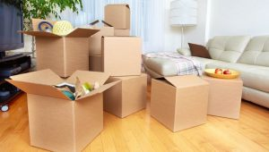 Local Packers and Movers Pune